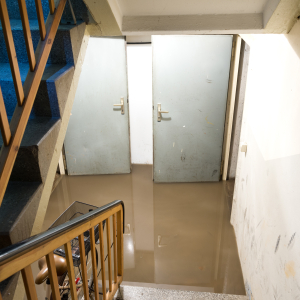 Water Damage in Orlando, FL