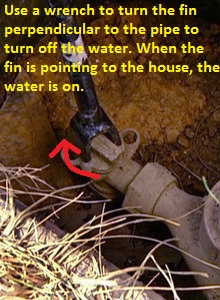 Basement Water Cleanup Cost Basement Waterproofing Water