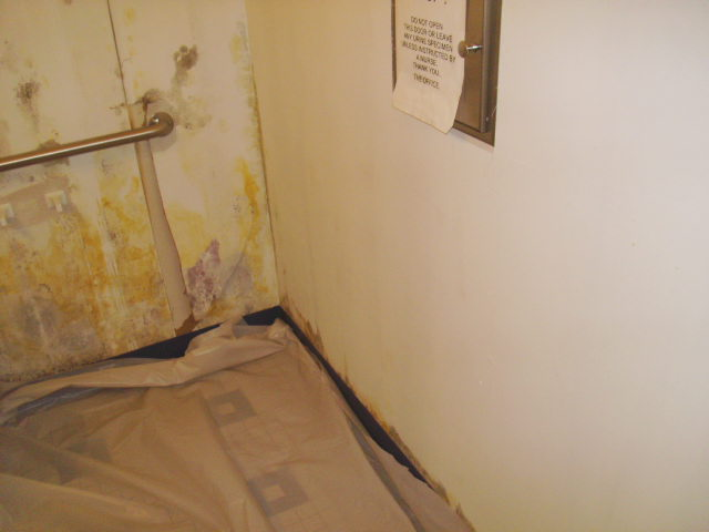 Toxic Black Mold Removal In Orlando- Before and After ...
